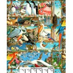 Bird Watching Variety Collection Cotton Fabric
