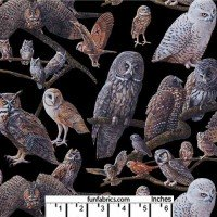 Variety of Owls on Black Cotton