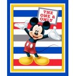 Mickey Mouse One and Only Panel