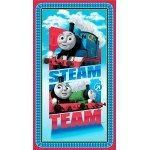 Thomas Steam Team Express Engine Panel