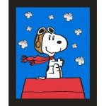 Snoopy Red Baron Panel